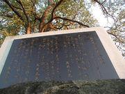 茨城県立岩井西高等学校