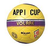 APPI CUP -安比カップ-