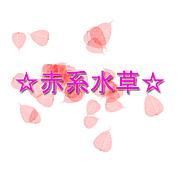 ☆赤系水草☆