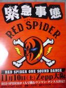 静岡紅蜘蛛県