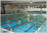 私立昭和学院 水泳部
