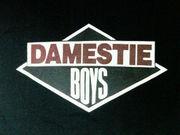 DAMESTIE BOYS
