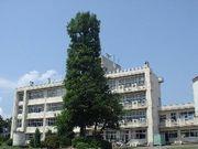 姫川原小学校