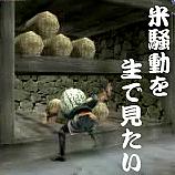 米騒動を生で見たい