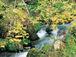 九州・中国地方の観光地