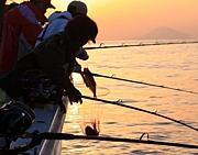 新島トロキンメ