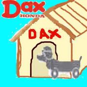 DAX用犬小屋@Kyoto