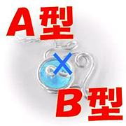 A型×B型カップル o(*・∀・)o