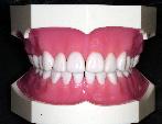 歯でリズムを刻む