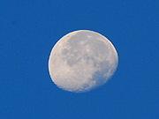 朝の月を眺めるのが好き。