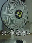 扇風機に何かを突っ込みたい