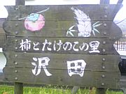 沢田の柿を愛でる会