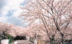 福岡大学☆法学部