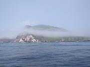 三陸の釣り