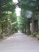 武蔵野女子学院卒業生2010!