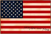 NEW AMERICAN YARD