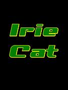 Irie cat