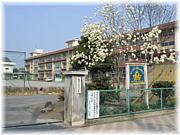 ★塚沢小学校★