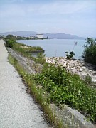 琵琶湖 サイクリング同好会