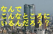 東京全否定