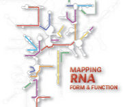 RNA for Life
