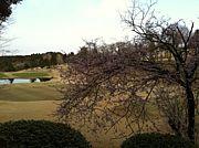 房総半島ゴルフカフェ -千葉-