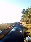 Lucky Bay -横浜福浦の釣り-