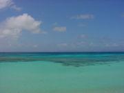 沖縄を愛する会