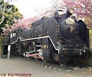 SL(蒸気機関車)大好き!SL!