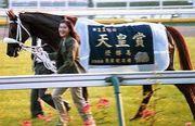 天皇賞馬オフサイドトラップ