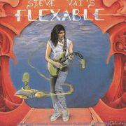 Steve Vai`s  Flex-Able
