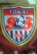 Mix Futsal Team 東海S.S