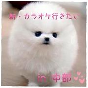 『新』カラオケ行きたい!in中部