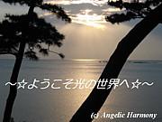 〜☆ようこそ光の世界へ☆〜