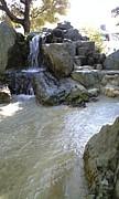 埼玉県内の公園