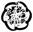 shizentomotel