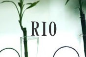 RIO-リオ-