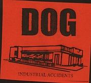 +DOG+ [NOISE]
