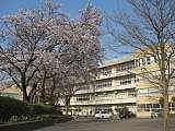 伊奈中学校平成生まれ卒業生