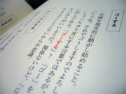 日本語で話してください