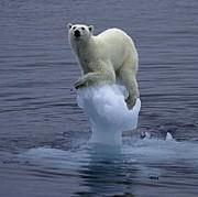 二酸化炭素を愛でるコミュ CO2
