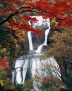 ☆☆ THE 袋田の滝 ☆☆
