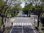 南貝取小学校(昭和46年生まれ)
