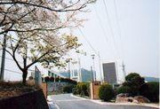 広島市立白木中学校