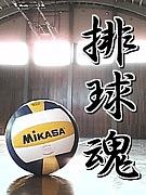 バレーボール愛好会 in愛知
