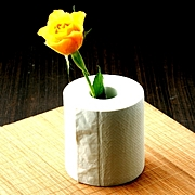 トイレットペーパーの匂いフェチ