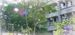 沖縄県立開邦高校9期生