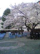 GMS学部☆2009年度☆