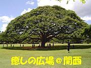 ★癒しの広場@関西★