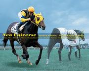 2冠馬ネオユニヴァース